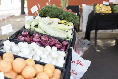 The Gilbert Farmers Market! Great local produce and products! Gilbert, Arizona