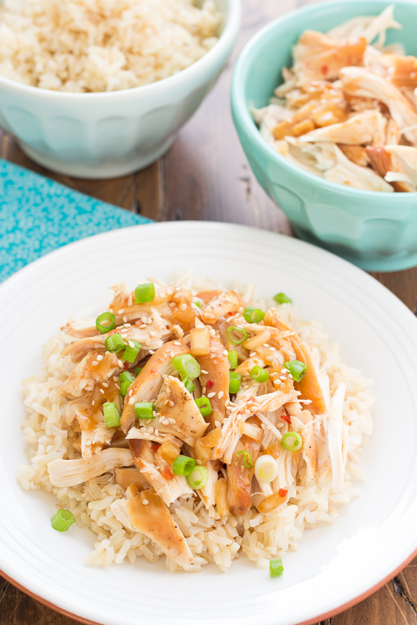 This Crock Pot Honey Sesame Chicken is one of my family's favorite easy dinners! Made in the slow cooker, this chicken is sweet and juicy!