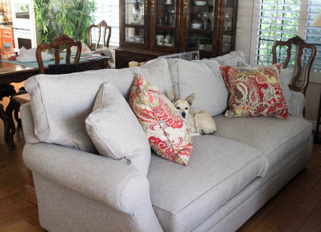 netural sofa with colorful throw pillows