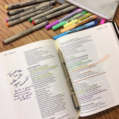 Do You Journal the Word? Journaling Bible Review & Giveaway