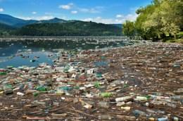 Adya-Clarity-reduces-plastic-bottle-pollution