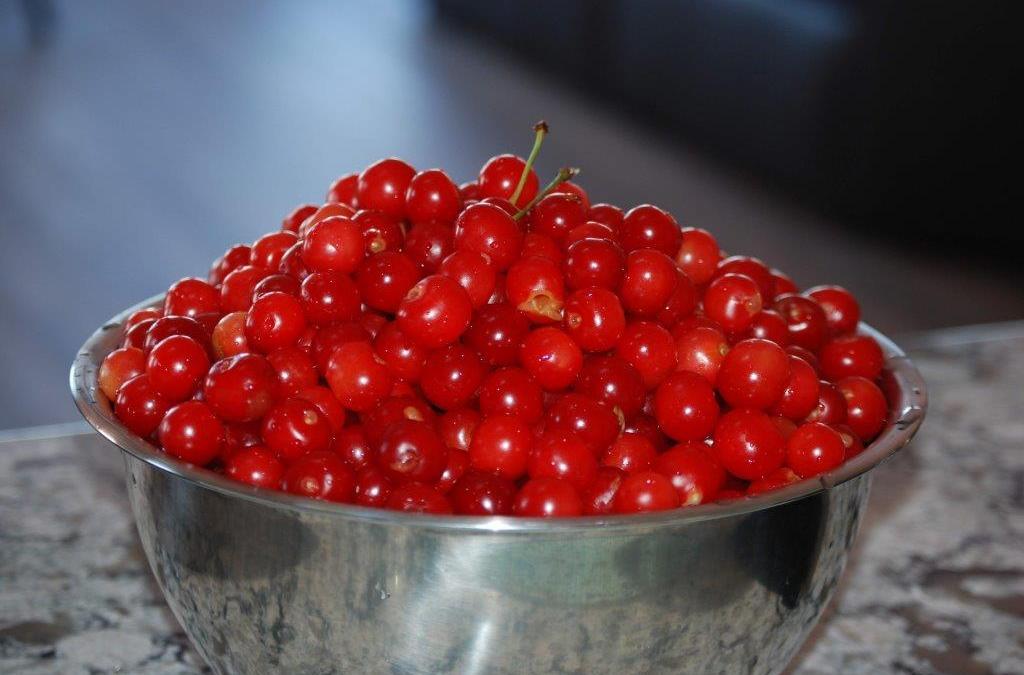 More Cherries, Cherries, Cherries!