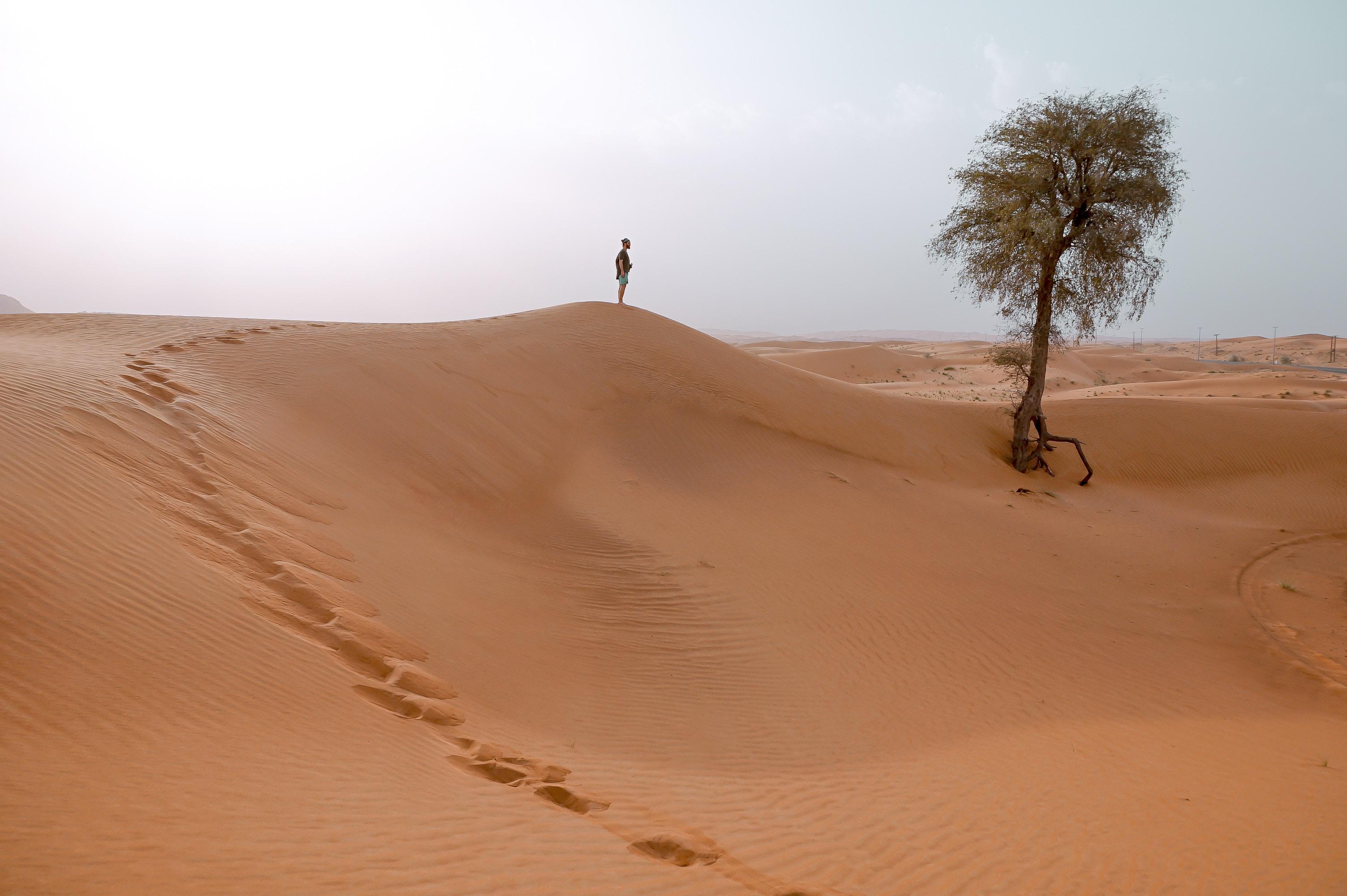 Lone figure in the desert
