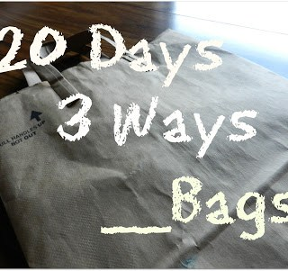 20 Days, 3 Ways, __ Bags: Books