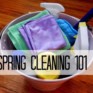 Spring Cleaning 101: The Basics