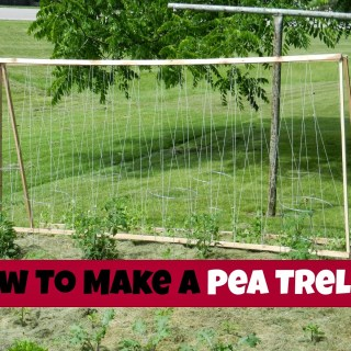 How To Make Your Own Pea Trellis