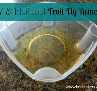 DIY and Natural Fruit Fly Remover