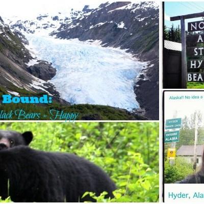 Alaska Bound: Bear Glacier + Black Bears = Happy