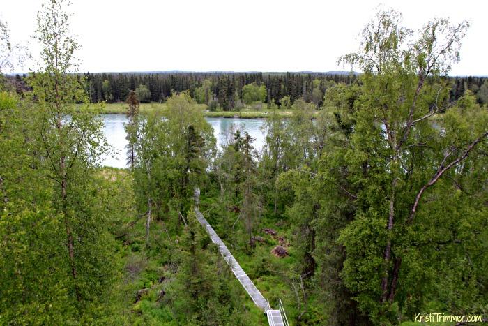 Salmon Catcher BB - View