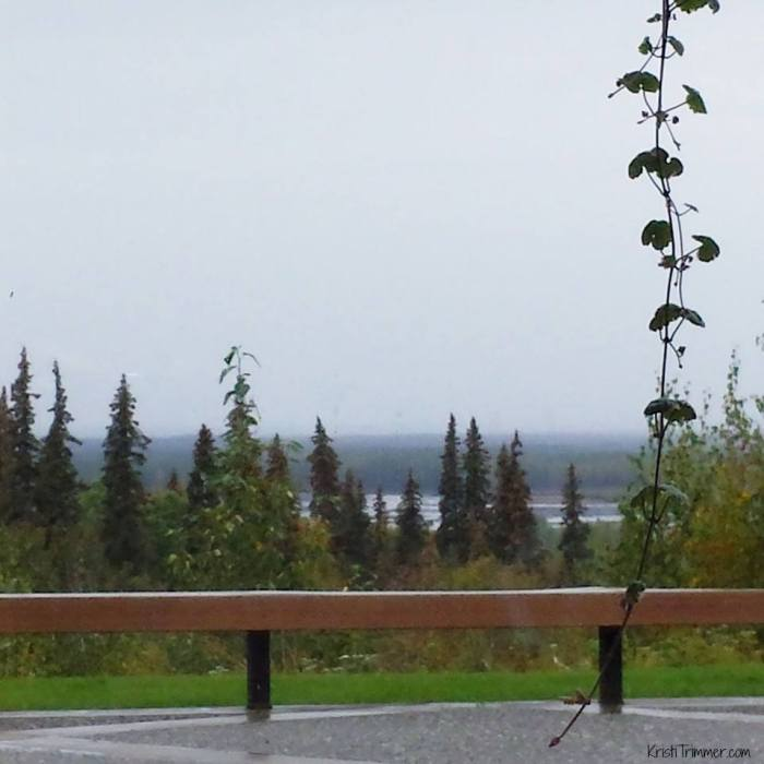 Talkeetna Lodge - The View from Fireplace