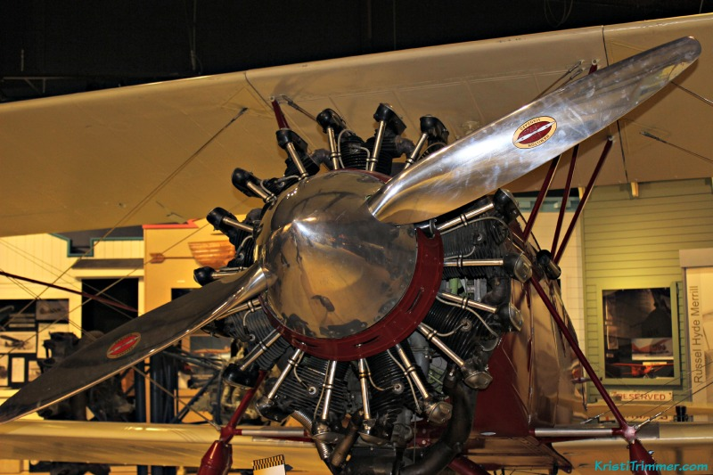 Bodega-Fest_06 Airplane