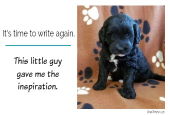 It's Time to Write Again. This Little Guy Gave Me the Inspiration.