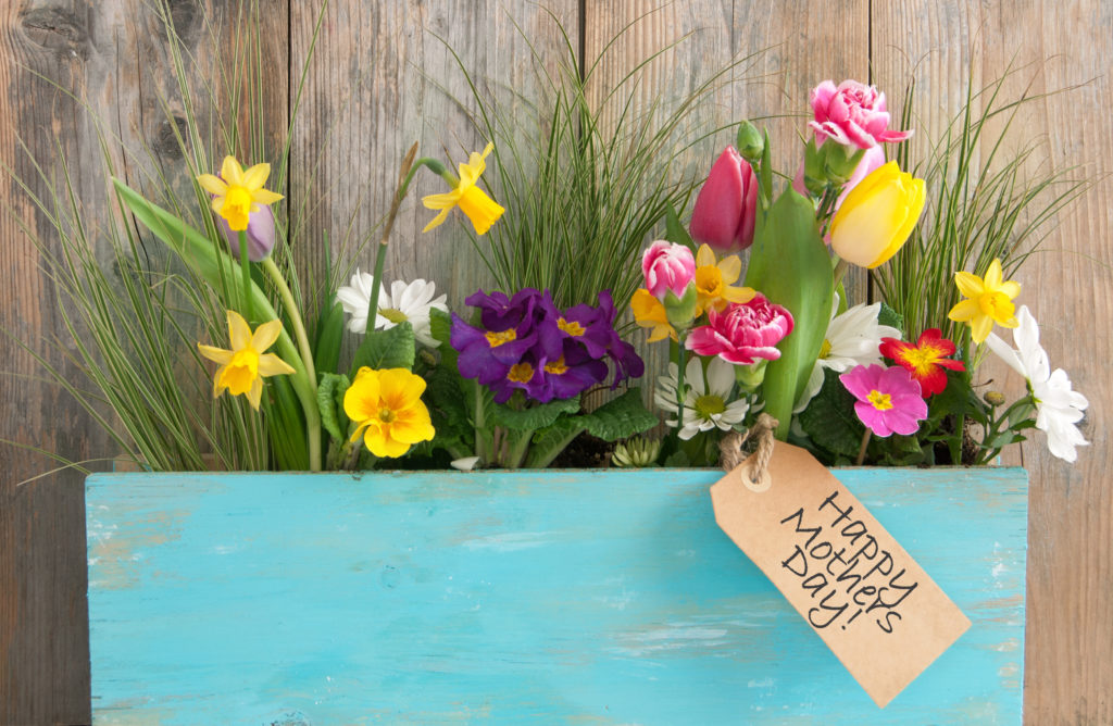 Mother's Day subscription box