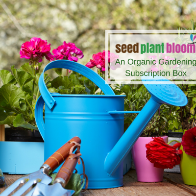 Seed Plant Bloom ~ An Organic Gardening Subscription Box