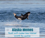 Alaska Memes That Will Make You Never Want to Leave
