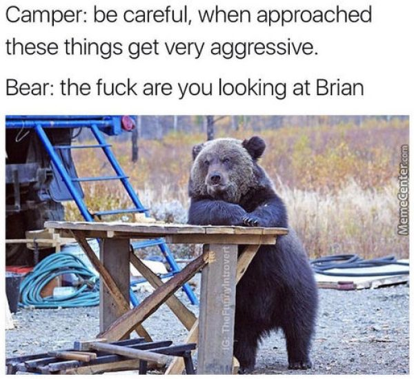 54 Camping Memes That Will Make You Want To Go Camping