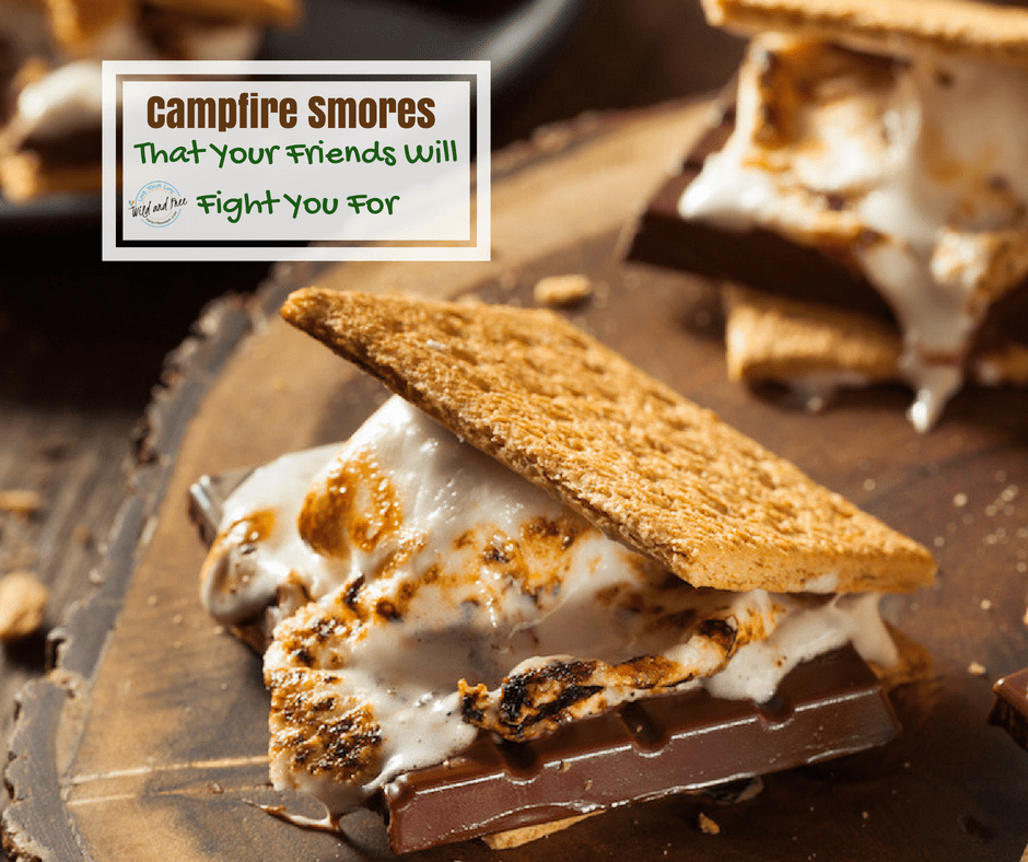 campfire smores for adults