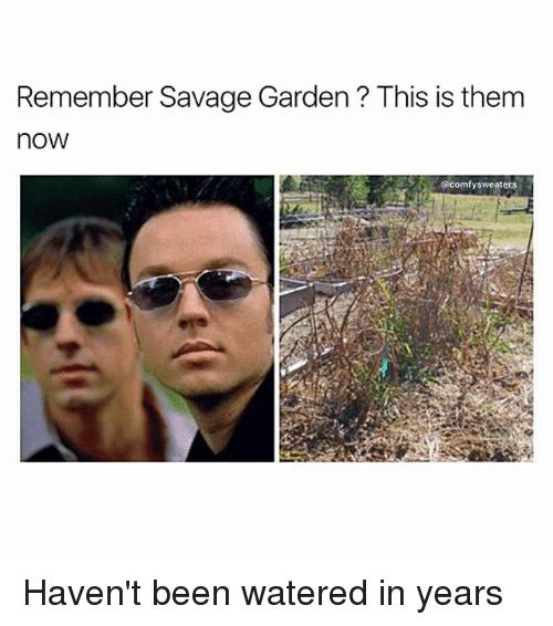 Savage Garden Meme