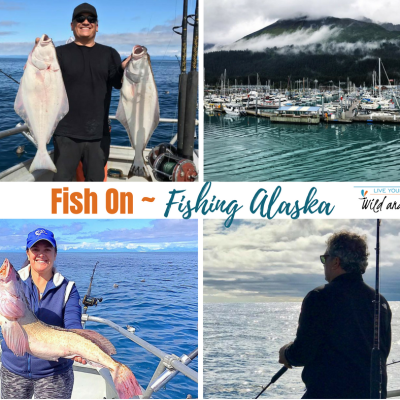 Fish On ~ Fishing Alaska