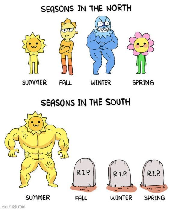 Seasons in the North vs. South #fall #autumn #fallmemes #memes #seasons #seasonschanging