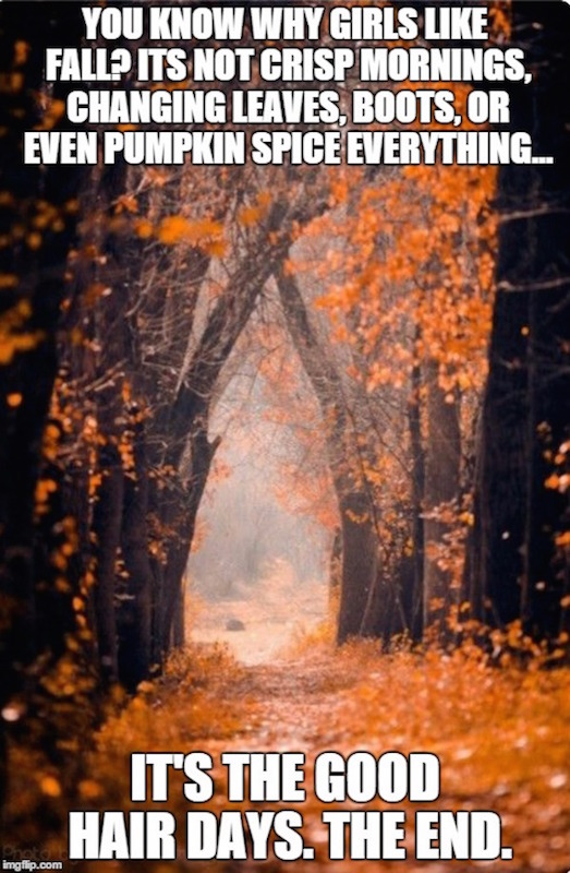 Good hair days for the win! #fall #autumn #fallmemes #memes #goodhairday