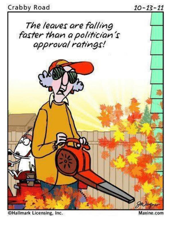 She's not wrong #fall #autumn #fallmemes #memes #maxine