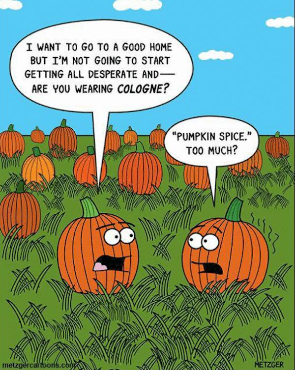 This one made me laugh!!! #fall #autumn #fallmemes #memes #psl #pumpkinspice #pumpkinspicelattes #pumpkins #pumpkinpatch