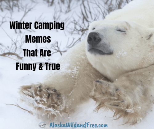 Winter Camping Memes that are Funny & True #wintercamping #camping #campingmemes