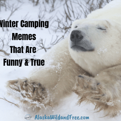 Winter Camping Memes That Are Funny Because They Are True