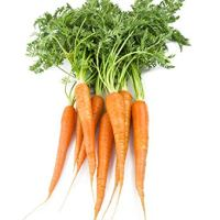 Locally Grown Carrots, 2 Bunches