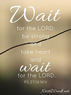 Wait for the LORD; be strong and take heart and wait for the LORD.Psalm 27_14 NIV