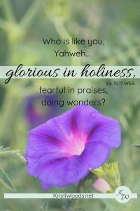 purple morning glory, green background and Exodus 15:11 written across top