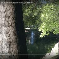 Shrewsbury Lake Pines (3 minutes)