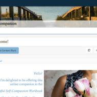 MSC Workbook Online Companion