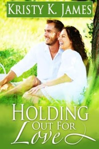 NaNo book cover