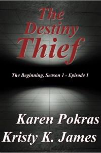 Destiny Thief 4-smaller copy