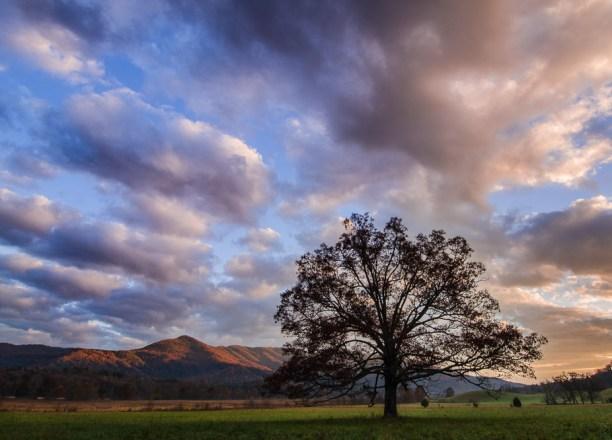 Smoky Mountains-339-2