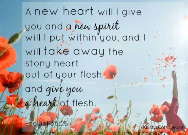"""A new heart will I give you and a new spirit will I put within you, and I will take away the stony heart out of your flesh, and give you a heart of flesh."" Ezekiel 36:26"