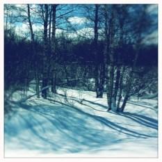 varjoja lumella