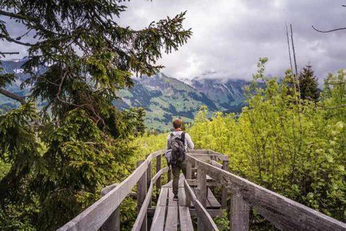 Swiss Trails