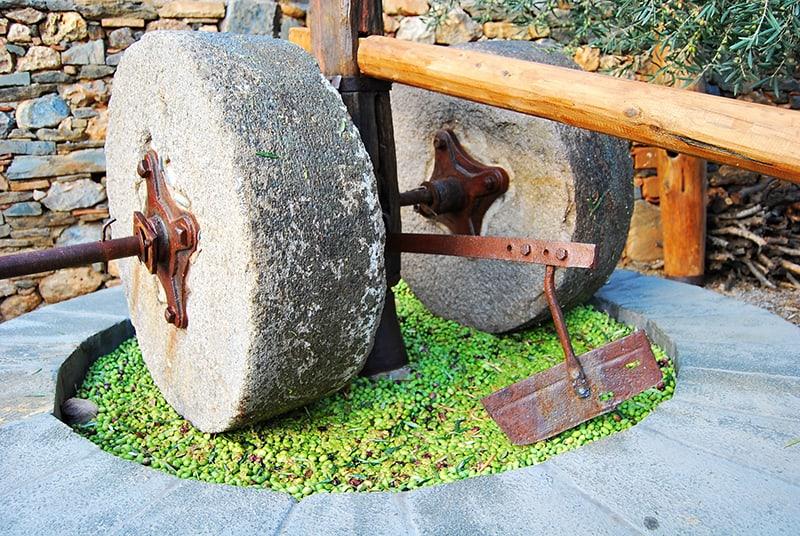 Tradicionális oliva prés