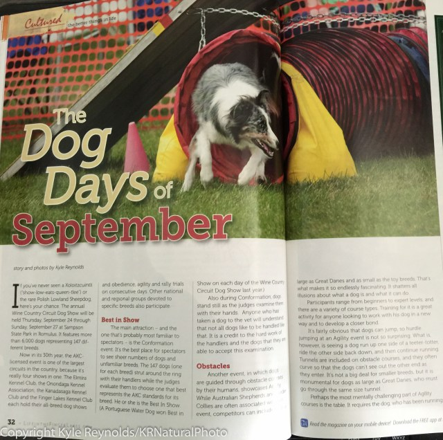 LIFL mag - dog show articleSeptember 14, 2015_2-2