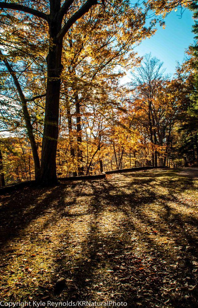 Letchworth State Park_October 25, 2015_265