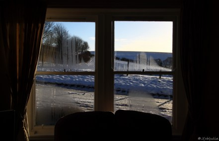 View from our livingroom