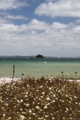 Rocky bay with a rock