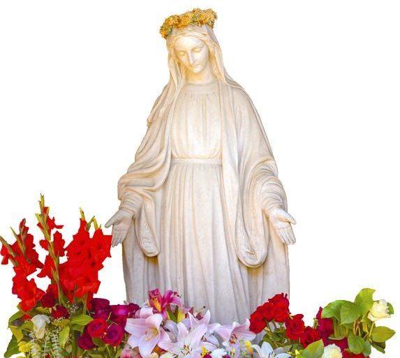 Kwiaty dla Maryi