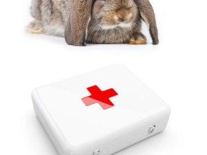 Аптечка\набір медикаментів для кролів №1