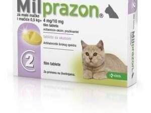 Милпразон таблетки 2×4 мг/10 мг