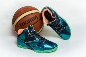 Nike Lebron James 11