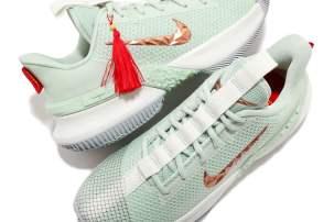 Nike LeBron Ambassador 13